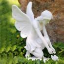 Dinova Fantasy Flower Fairy
