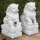 Dinova Oriental Foo Dogs Pair M