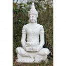 Dinova Oriental Sitting Champa M