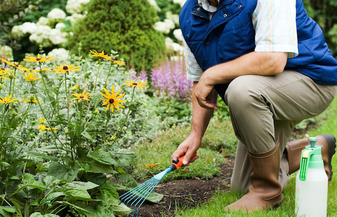 Gardening For Beginners: Easy Projects To Get Started