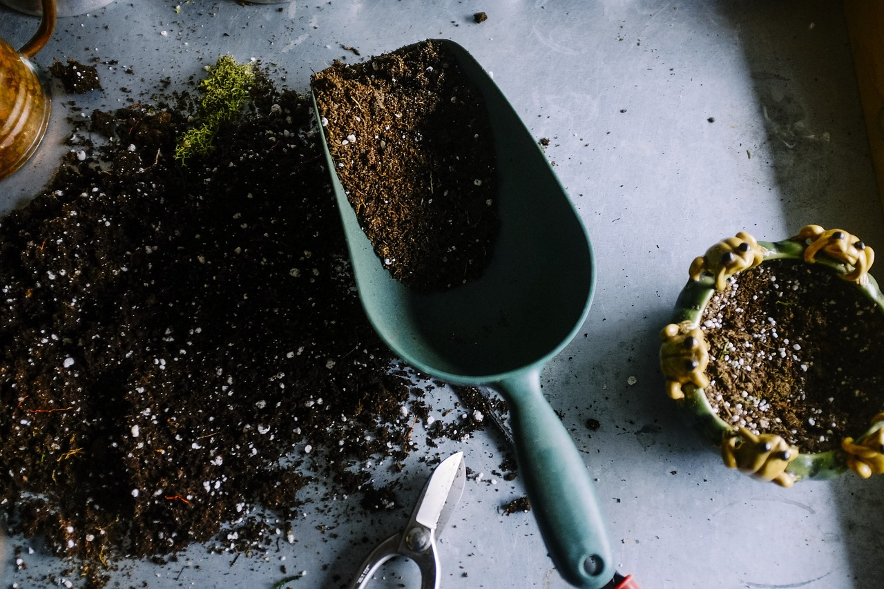 Simple Yet Effective Upgrades Your Garden Will Benefit From