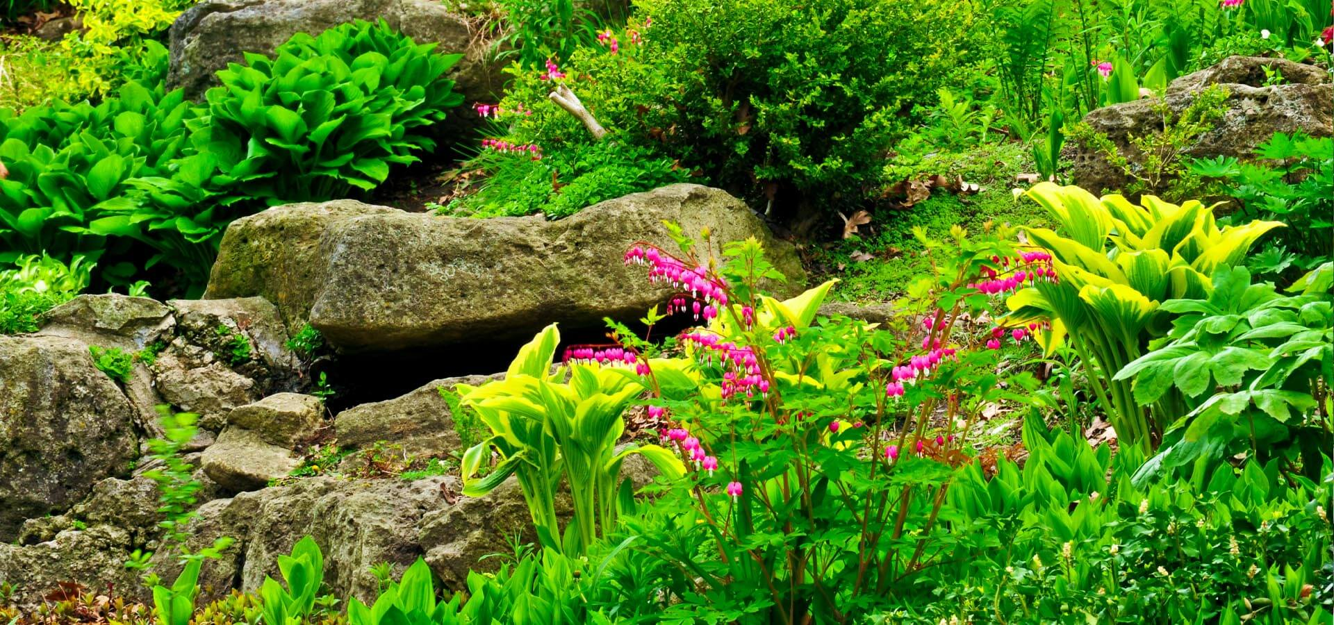 Inspiration for a classic English rockery