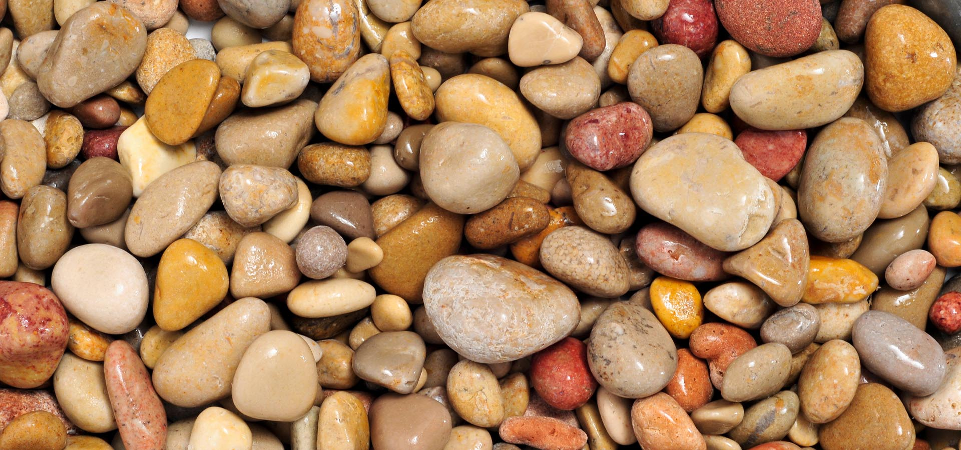 What are Scottish Cobbles and how can you use them in your garden?