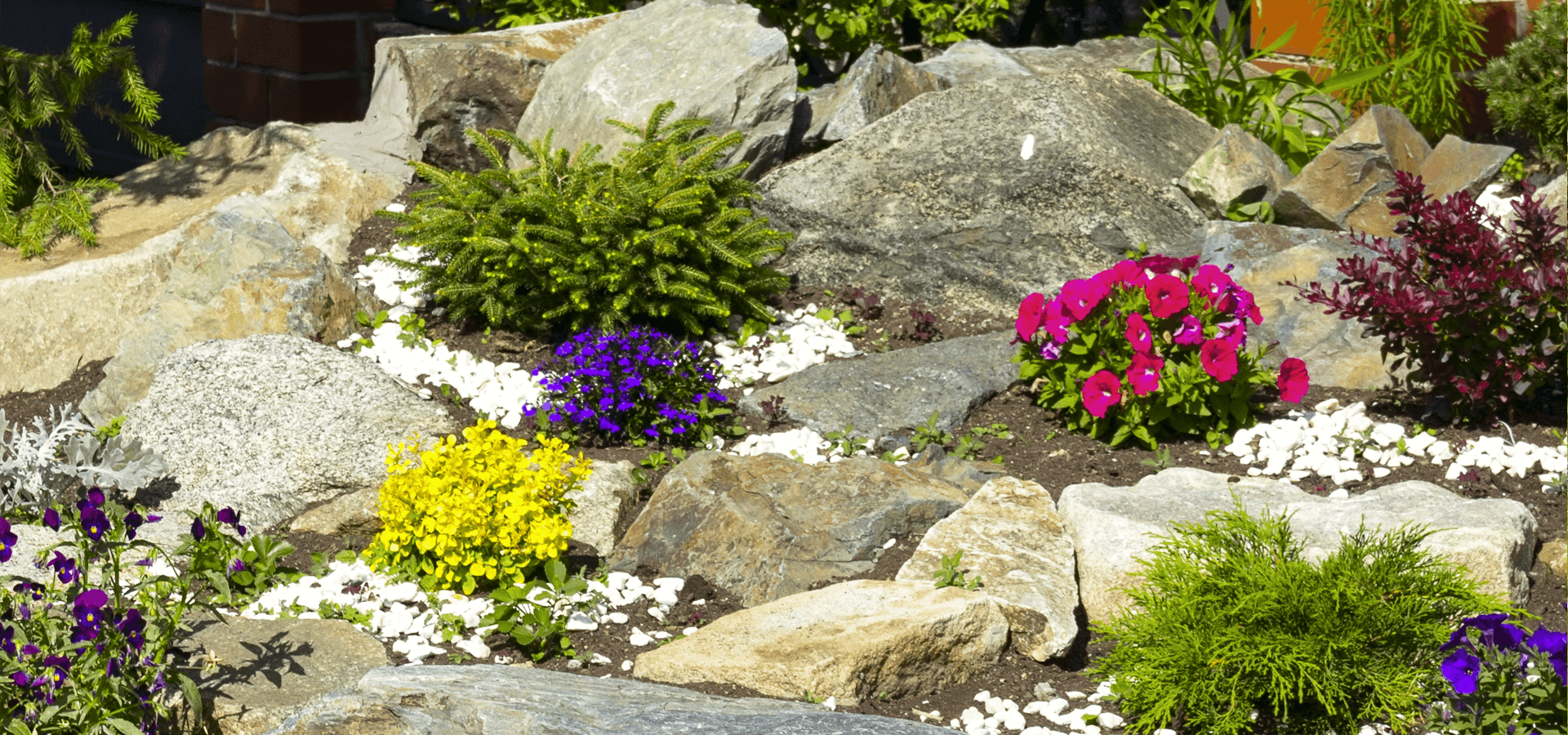 Where can you buy rockery stone online?